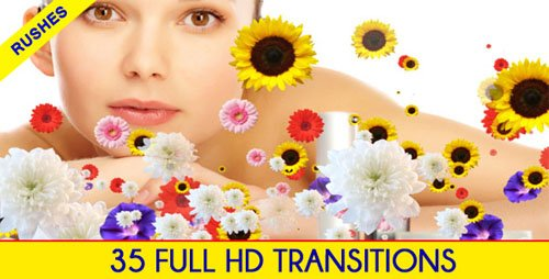VideoHive Editors Transition Pack