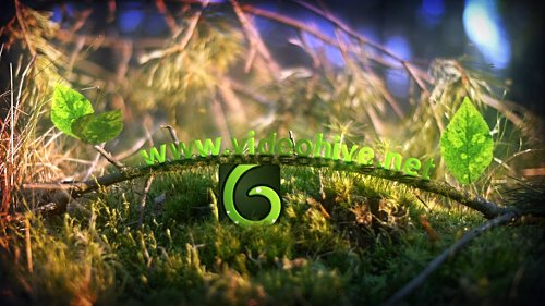 Spring Leaves Logo - Project for After Effects (Videohive)