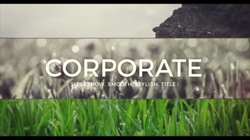 Slide for Business - Project for After Effects (Videohive)