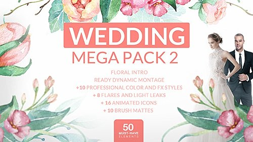 Wedding Mega Pack 2 - Project for After Effects (Videohive)