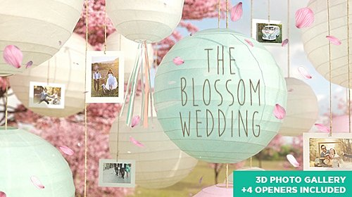 The Blossom Wedding - Photo Gallery Slideshow - Project for After Effects (Videohive)