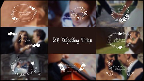 Wedding Titles 17267979 - Project for After Effects (Videohive)