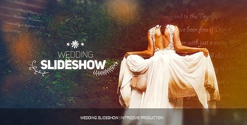 Wedding Slideshow 17880999 - Project for After Effects (Videohive)