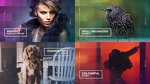 Colourful Slides - Project for After Effects (Videohive)