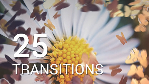 Butterflies Transitions - Project for After Effects (Videohive)