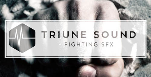 Triune - Triune Sound: Fighting SFX