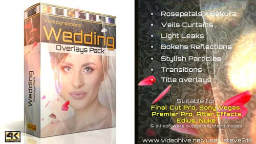 Wedding Overlays Pack - 21713069 Videohive