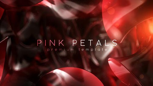 Pink Petals - 27045313 - Project for After Effects