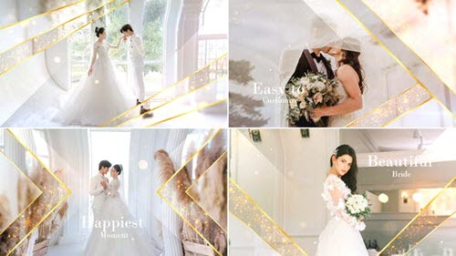 Elegant Particle Wedding Slideshow - 31687220 - Project for After Effects